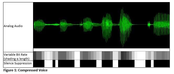 Compressed voice audio recording