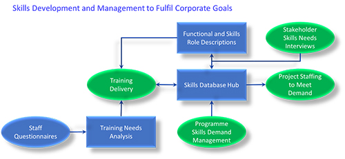 Skills Development and Management flow chart