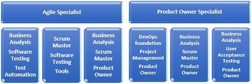 Agile Programme detailing different hybrid roles